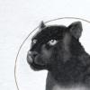 Close up of Grow Stronger | Black Panther