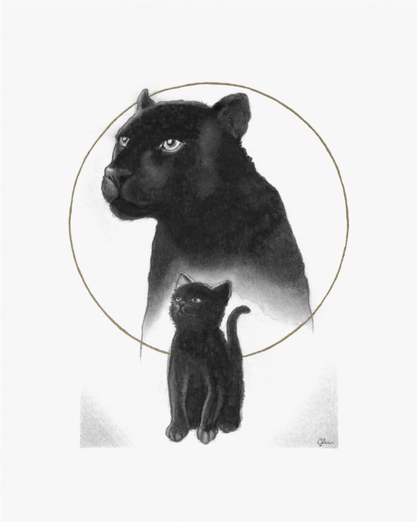 Grow Stronger | Black Panther and Black Cat