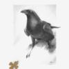 Raven Art by Carolina Lebar