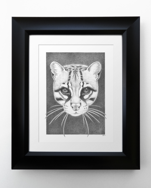 Ocelot with Matte and Frame