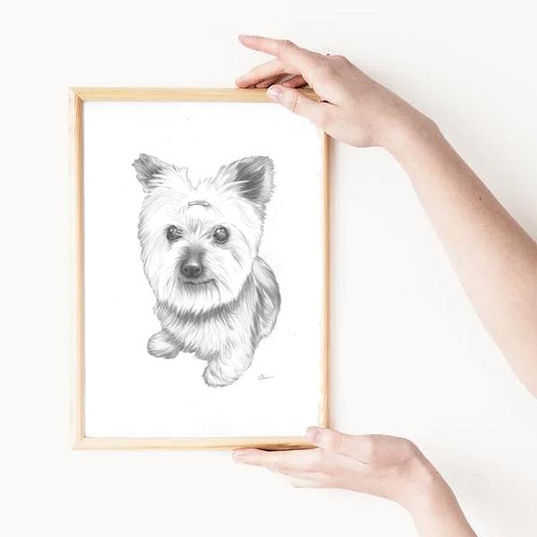 Framed Pet Portrait Drawing
